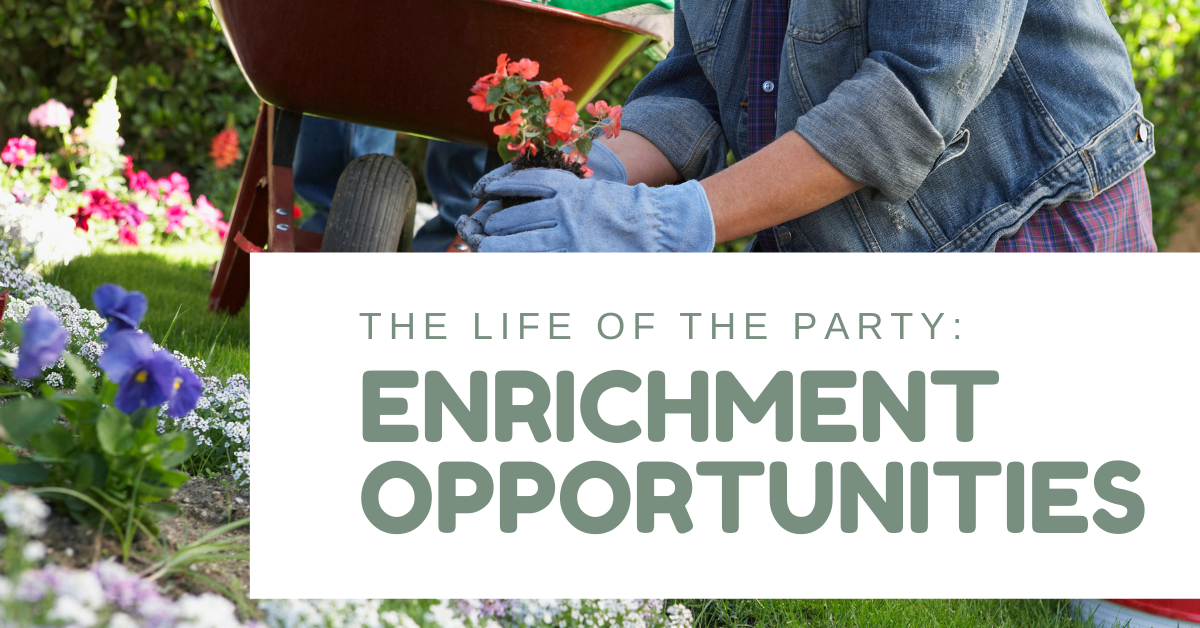 The-Life-of-the-Party-Enrichment-Opportunities-Blog-Banner