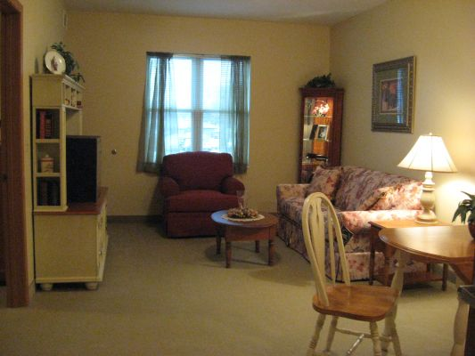 Apartment Living Room | Evergreen Place - Litchfield, Illinois